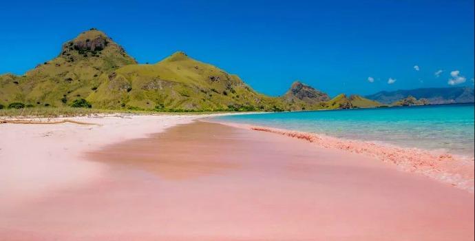 Pink Sands Beach nas Bahamas