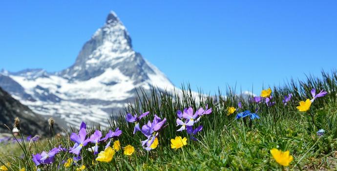 Alpes Suíços no verão