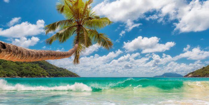 Foto de praia da Jamaica