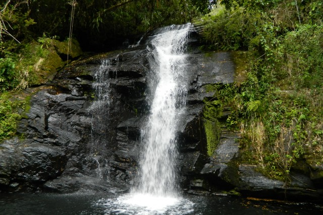 No parque é possível tomar banho de cachoeira por toda a trilha Foto: Parque Estadual Serra do Mar