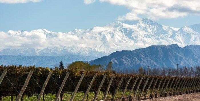 Uma das mais de 100 vinícolas em Mendoza