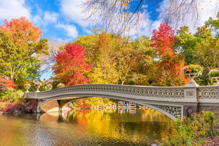 No outono a paisagem fica ainda melhor