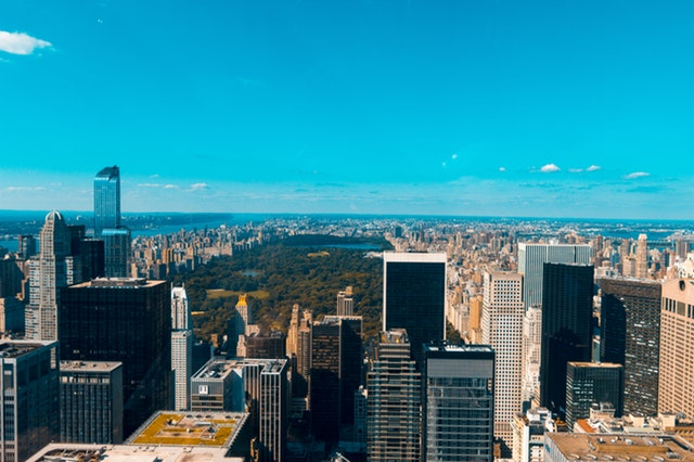 O verde se destaca entre os prédio de Nova York